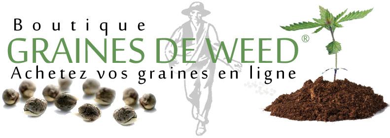 Graines de weed acheter semences de cannabis au meilleur prix en france - Acheter des graines de tabac en france ...